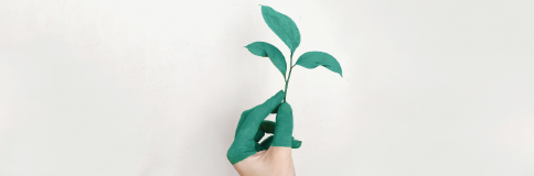 Go green with these top hr managment practices